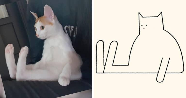 Aqui estão meus 40 novos desenhos de gatos bobos para fazer você rir 1