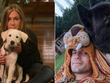 38 celebridades que são verdadeiros amantes de cães 39
