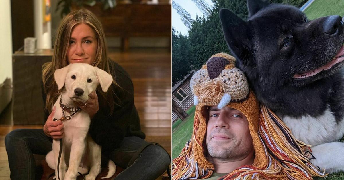 38 celebridades que são verdadeiros amantes de cães 25