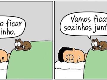 19 divertidas situações da vida quando um gato deixa você morar na casa dele 34