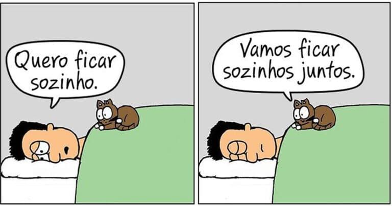 19 divertidas situações da vida quando um gato deixa você morar na casa dele 1