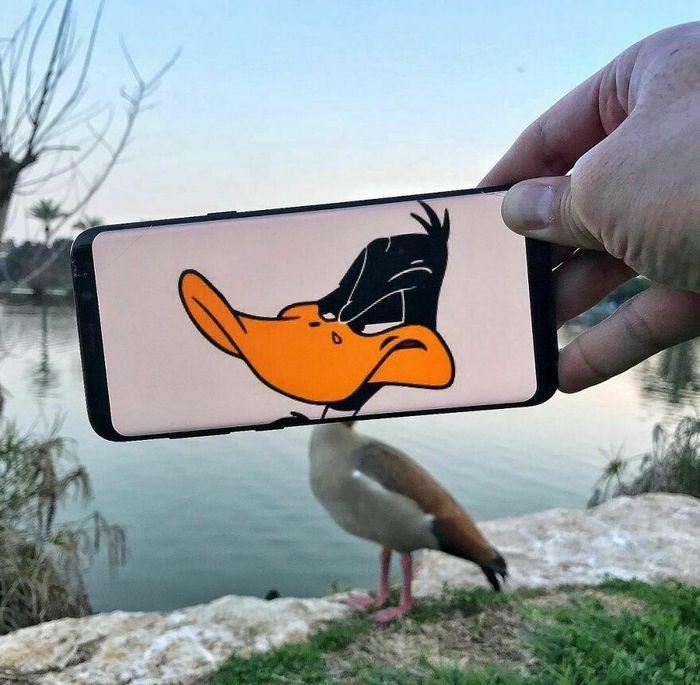 Dou vida a objetos do dia-a-dia com meu celular e sem Photoshop 6