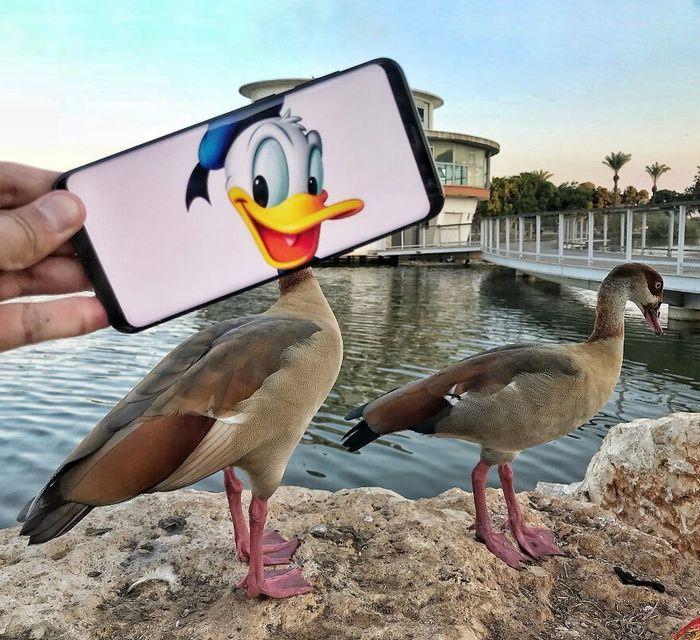 Dou vida a objetos do dia-a-dia com meu celular e sem Photoshop 22