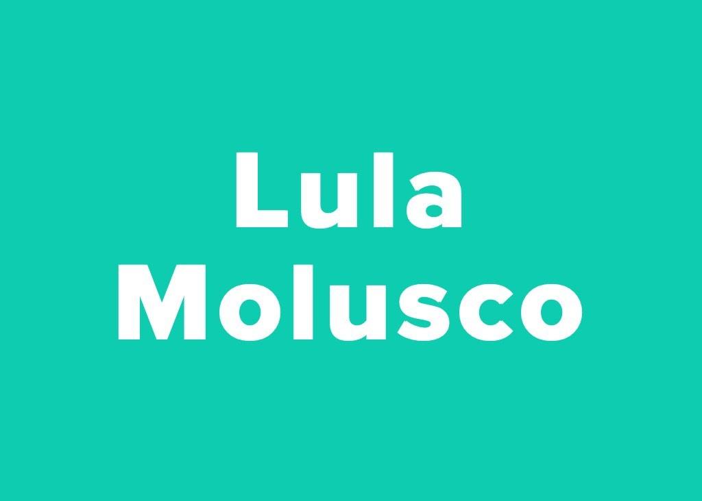 Quem disse isso, Lula ou Lula Molusco? 24