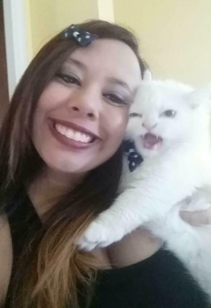 38 vezes que gatos disse um Não para o abraço 3