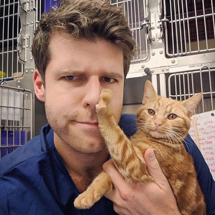 38 vezes que gatos disse um Não para o abraço 15
