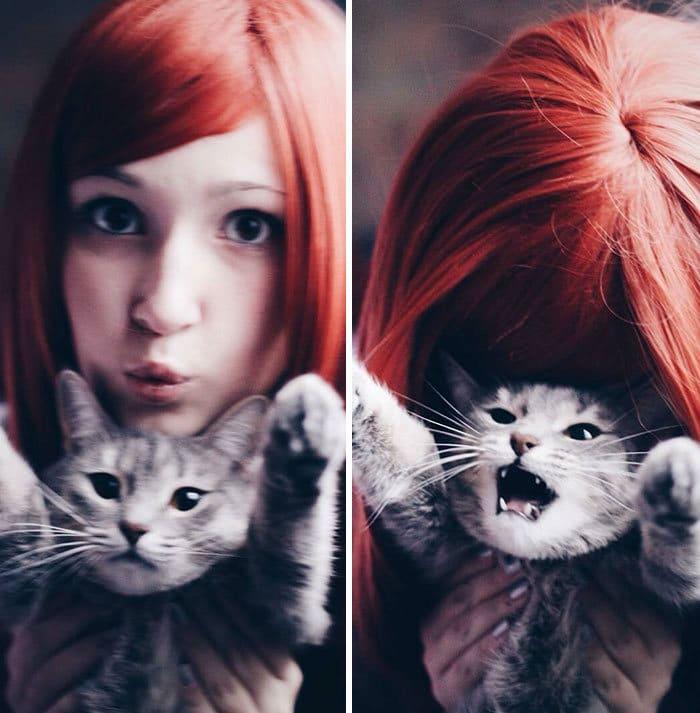 38 vezes que gatos disse um Não para o abraço 17