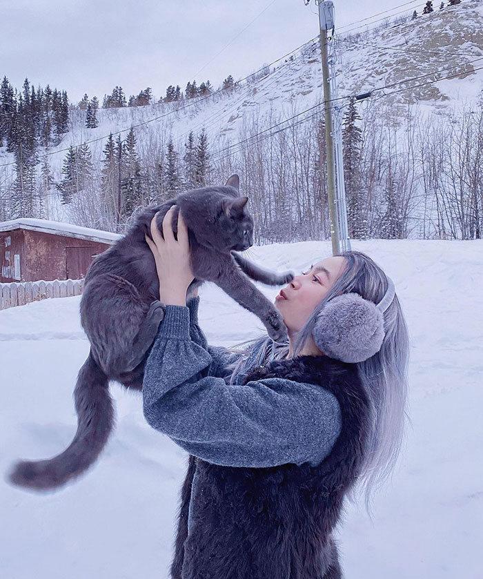 38 vezes que gatos disse um Não para o abraço 18