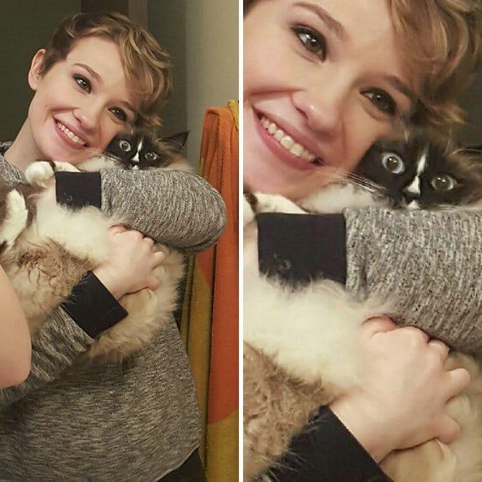 38 vezes que gatos disse um Não para o abraço 23
