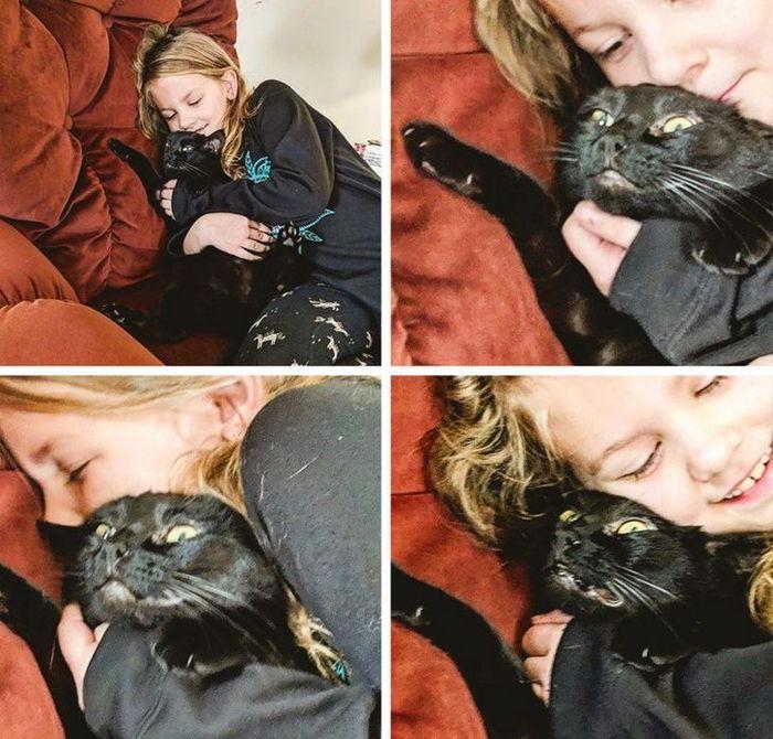 23 gatinhos sinceros que não esconder suas emoções 5