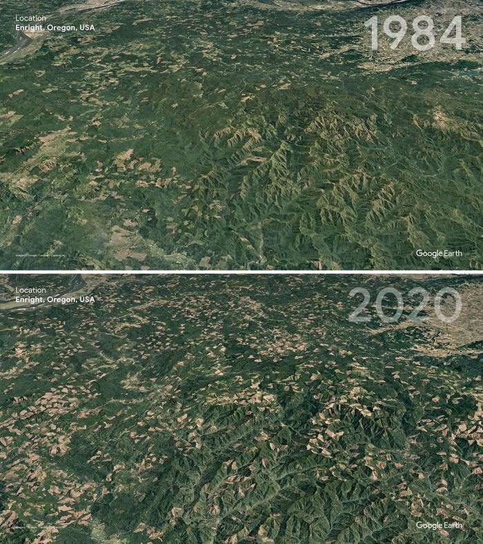 O Google Earth mostra o que os humanos fizeram com a Terra de 1984 a 2020 11