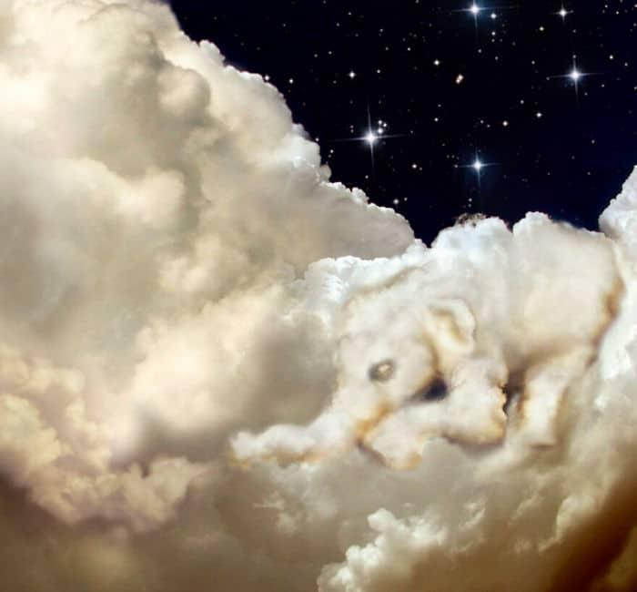As pessoas foram desafiadas a criar nuvens no Photoshop (42 fotos) 12