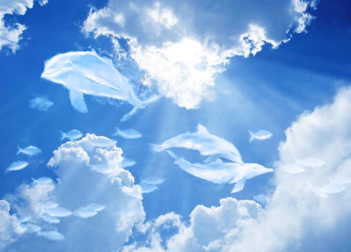 As pessoas foram desafiadas a criar nuvens no Photoshop (42 fotos) 17
