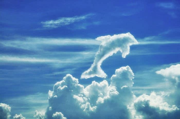 As pessoas foram desafiadas a criar nuvens no Photoshop (42 fotos) 19