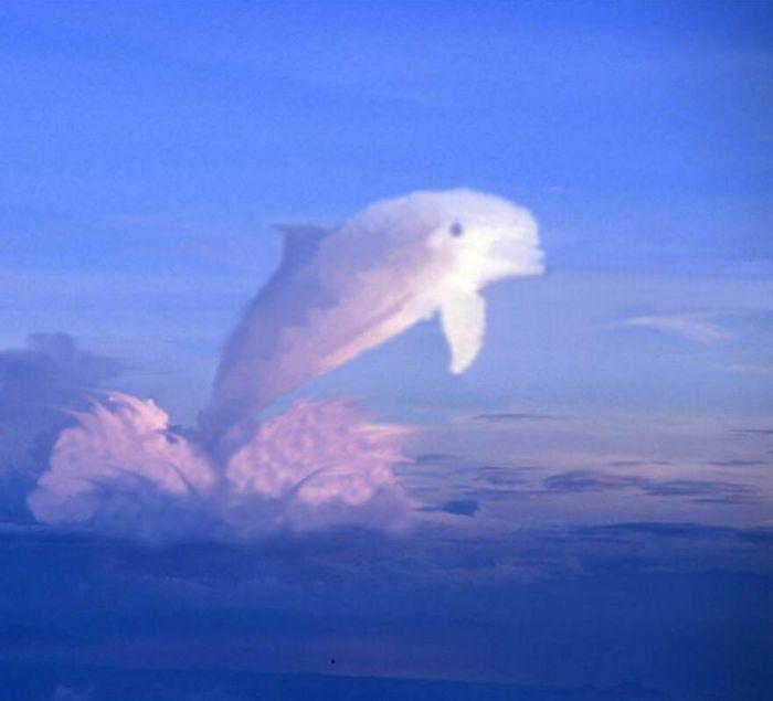 As pessoas foram desafiadas a criar nuvens no Photoshop (42 fotos) 39