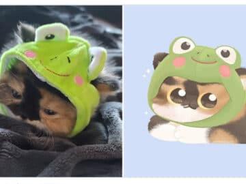 Bib transforma fotos engraçadas de animais em desenhos fofos 36