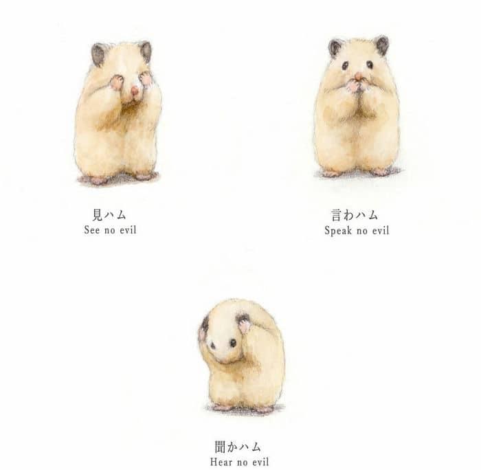 34 Ilustrações saudáveis de um Hamster Chamado Sukeroku 7
