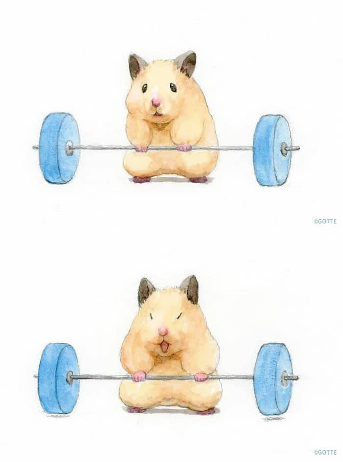 34 Ilustrações saudáveis de um Hamster Chamado Sukeroku 31