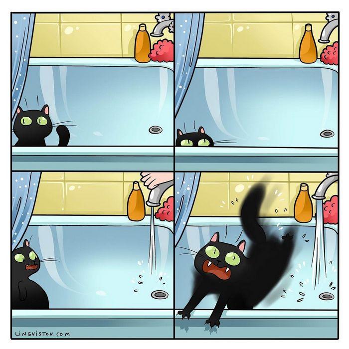Artista ilustra momentos hilariantes na vida de cada proprietário de gato (35 fotos) 10