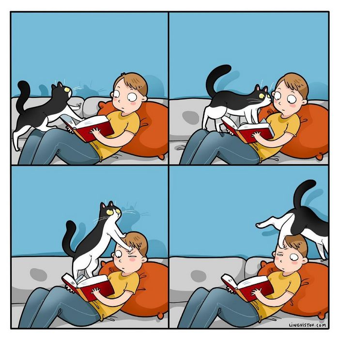 Artista ilustra momentos hilariantes na vida de cada proprietário de gato (35 fotos) 12