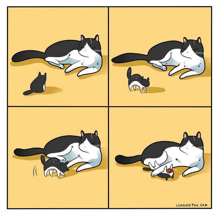 Artista ilustra momentos hilariantes na vida de cada proprietário de gato (35 fotos) 17