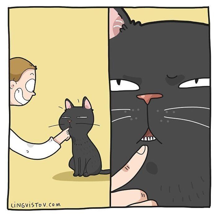 Artista ilustra momentos hilariantes na vida de cada proprietário de gato (35 fotos) 21