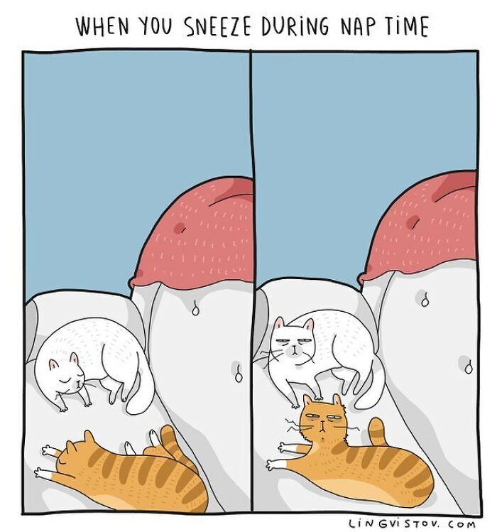 Artista ilustra momentos hilariantes na vida de cada proprietário de gato (35 fotos) 32