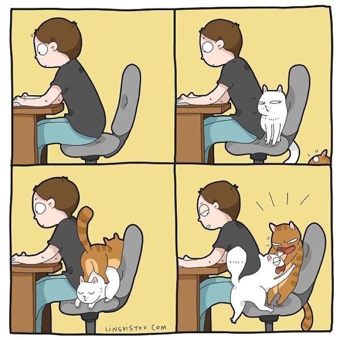 Artista ilustra momentos hilariantes na vida de cada proprietário de gato (35 fotos) 36