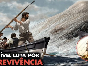 A história aterrorizante do real Moby Dick 4