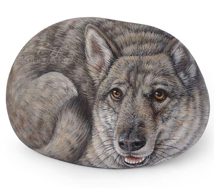 Artista transforma pedras em pinturas incríveis de animais (30 fotos) 8
