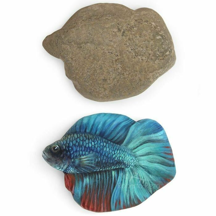 Artista transforma pedras em pinturas incríveis de animais (30 fotos) 24