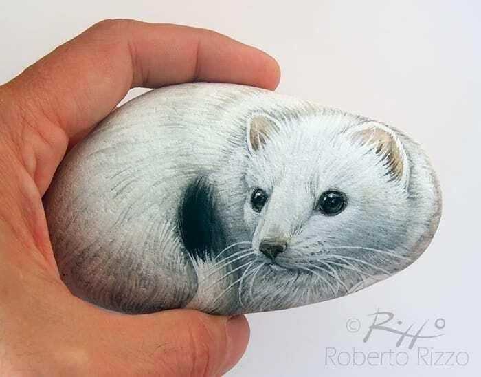 Artista transforma pedras em pinturas incríveis de animais (30 fotos) 25