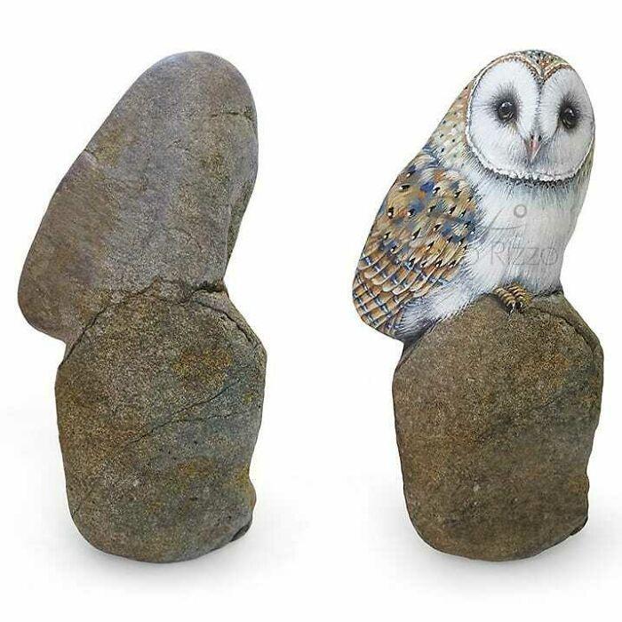 Artista transforma pedras em pinturas incríveis de animais (30 fotos) 27