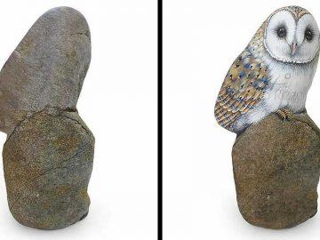 Artista transforma pedras em pinturas incríveis de animais (30 fotos) 46