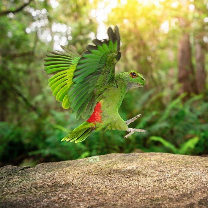 Esta agência de design transforma animais, plantas e outras coisas em imagens surreais usando o Photoshop (48 fotos) 5