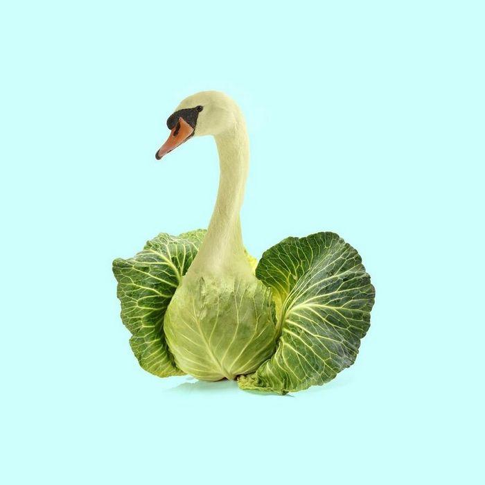 Esta agência de design transforma animais, plantas e outras coisas em imagens surreais usando o Photoshop (48 fotos) 21