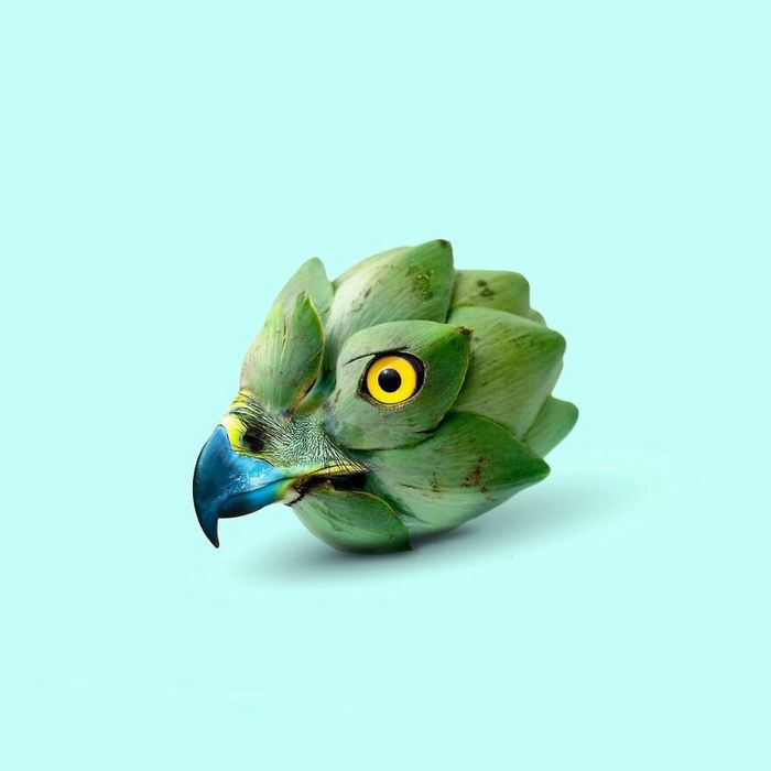 Esta agência de design transforma animais, plantas e outras coisas em imagens surreais usando o Photoshop (48 fotos) 26