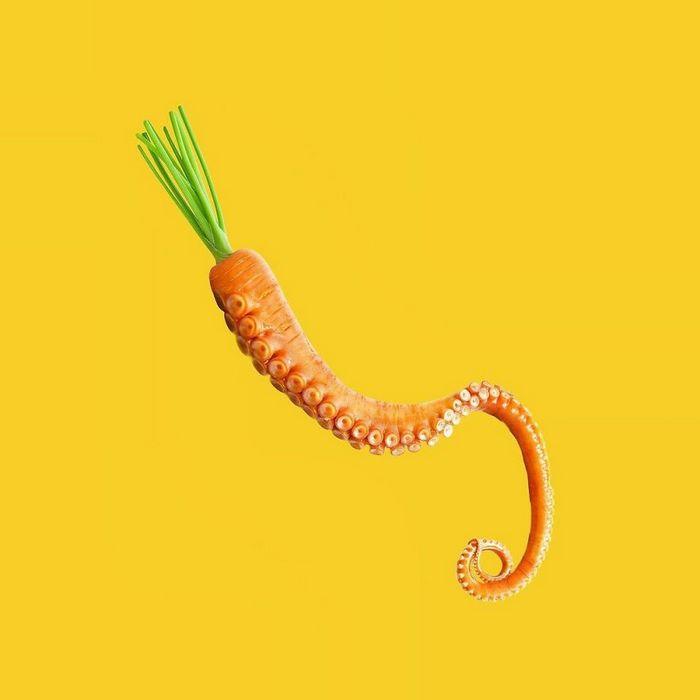 Esta agência de design transforma animais, plantas e outras coisas em imagens surreais usando o Photoshop (48 fotos) 31