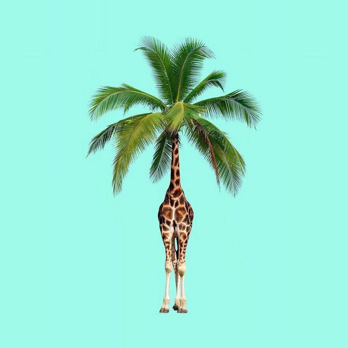 Esta agência de design transforma animais, plantas e outras coisas em imagens surreais usando o Photoshop (48 fotos) 32