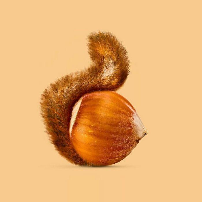 Esta agência de design transforma animais, plantas e outras coisas em imagens surreais usando o Photoshop (48 fotos) 33