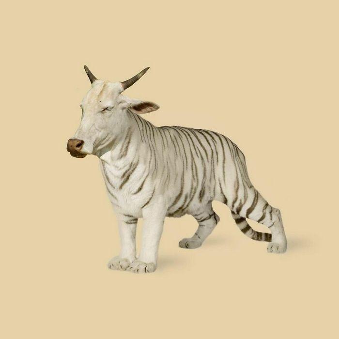 Esta agência de design transforma animais, plantas e outras coisas em imagens surreais usando o Photoshop (48 fotos) 40