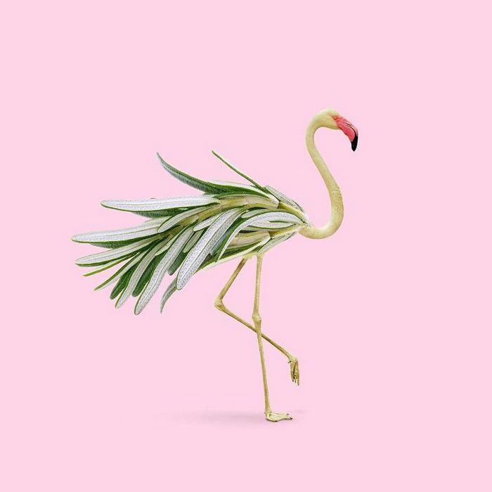 Esta agência de design transforma animais, plantas e outras coisas em imagens surreais usando o Photoshop (48 fotos) 44
