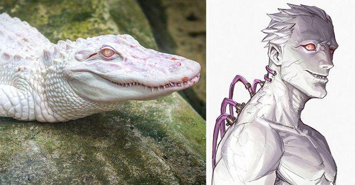 Este artista usa animais como inspiração para criar personagens originais de anime (23 fotos) 6