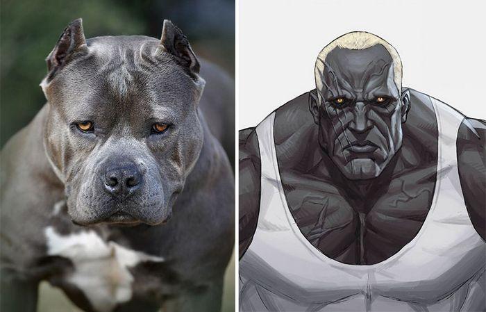 Este artista usa animais como inspiração para criar personagens originais de anime (23 fotos) 21