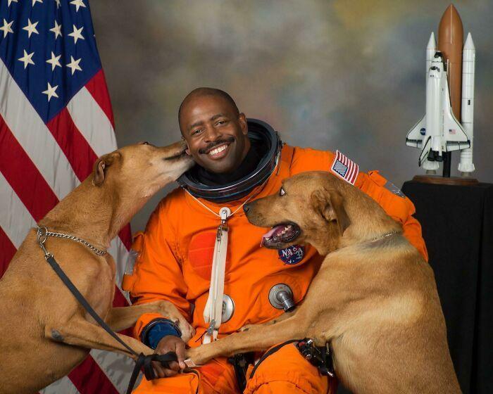 57 fotos hilárias de cachorro para colocar um sorriso em seu rosto 42