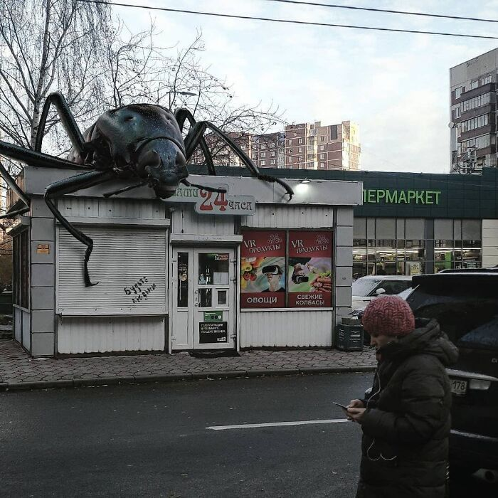 30 montagem de fotos inesperadas com animais gigantes por Vadim Solovyev 23