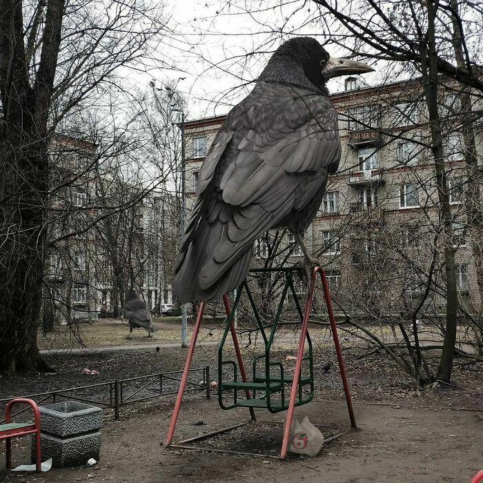 30 montagem de fotos inesperadas com animais gigantes por Vadim Solovyev 28