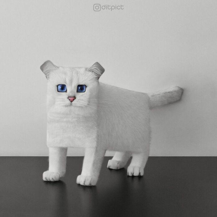 Artista muda animais para terem a forma de cubos (38 fotos) 10