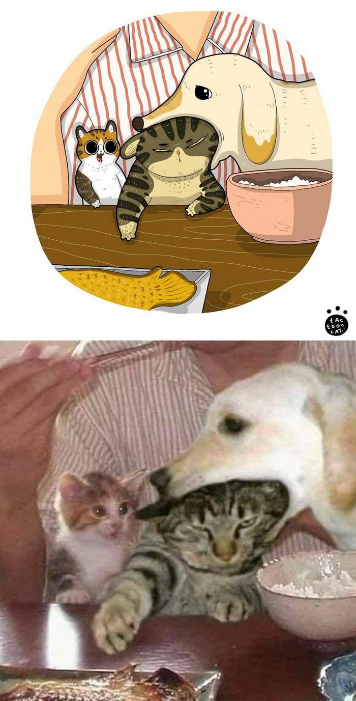 Artista transforma fotos engraçadas de gatos em ilustrações (35 fotos) 3