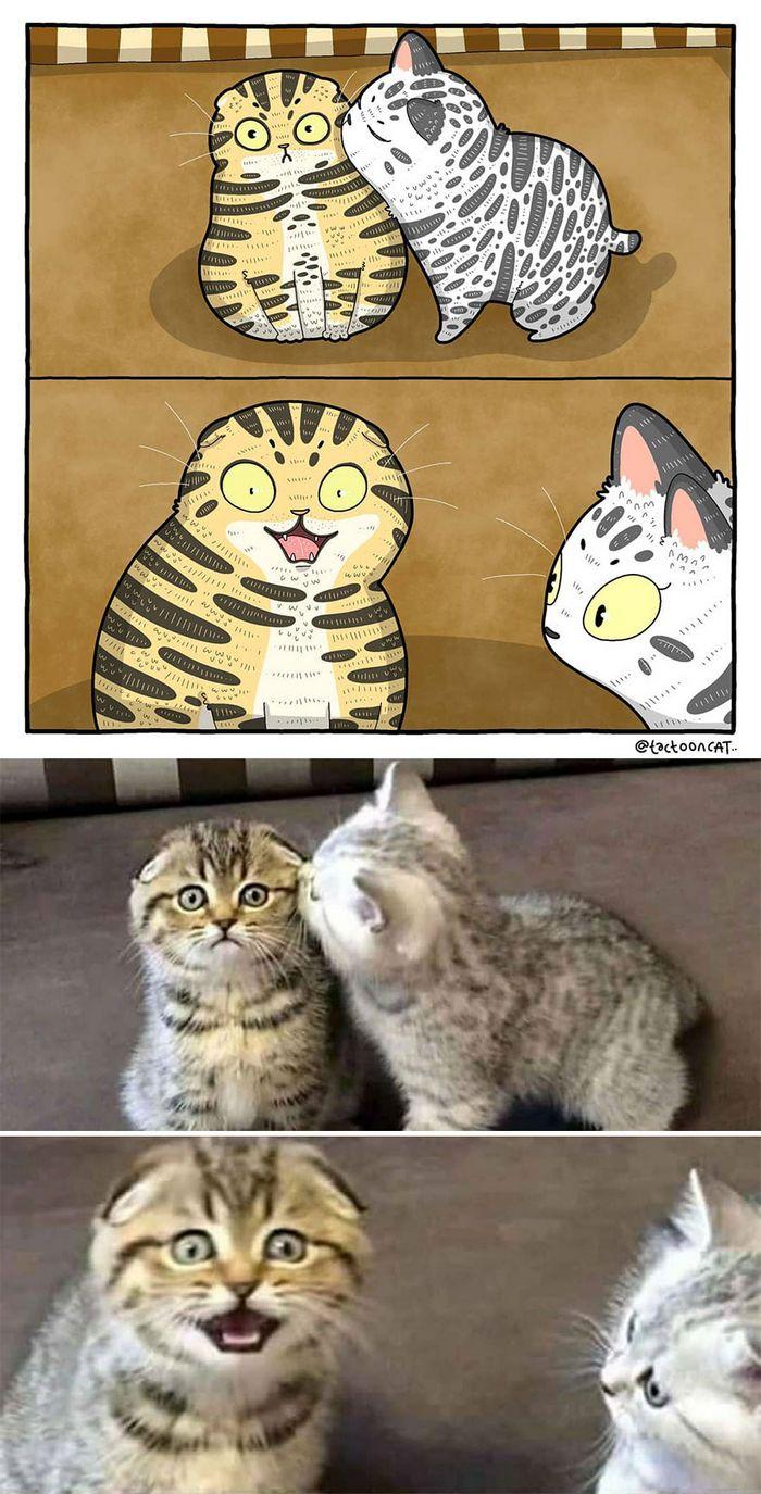 Artista transforma fotos engraçadas de gatos em ilustrações (35 fotos) 5